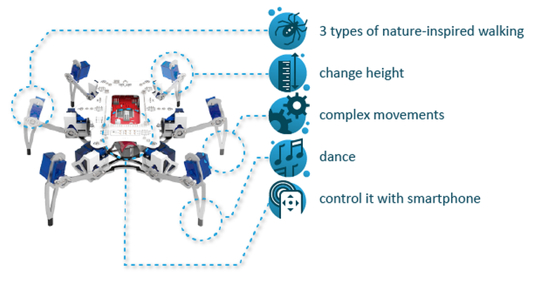 STEMI-A-Hexapod-Robot-That-Can-Be-Built-By-A-13-Year-Old-3.png